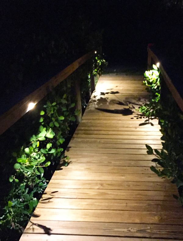 landscape lighting design installation home